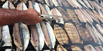 D Vitamini Eksikliği Varsa Balık Yiyin