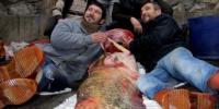 100 Kilo Ağırlığında Yayın Balığı Şaşırttı