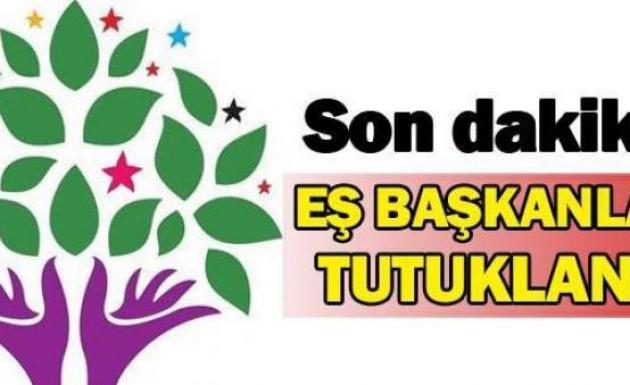 HDP Bingöl İl Eş Başkanları Tutuklandı