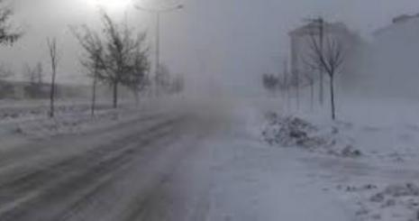 Soğuk, Fırtına Yurdu Terk Etmedi