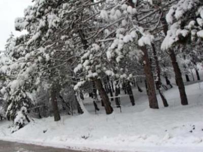 Bolu'da Sabah Uyananlar Kar ile Uyandı