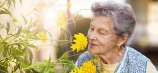 Yaşlılık ve bakım maaşı nasıl alınır?