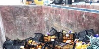 Rusya'ya gönderdiğimiz 21 ton mandalina imha edildi