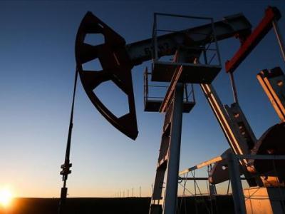 OPEC'in ham petrol üretimi ocakta 509 bin varil azaldı