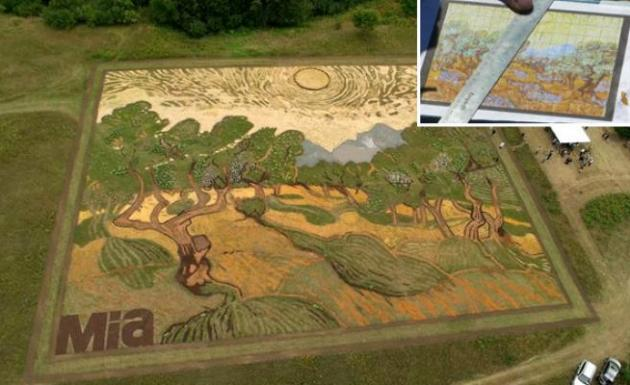 Tarlasına 'Van Gogh'un tablosunu çizdi