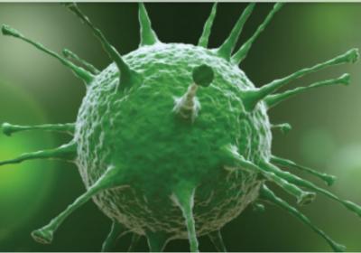 Coronavirüs Alameti ! Peygamberimiz 1400 Yıl Önce Uyarmıştı. Bakın Ne Oluyor.